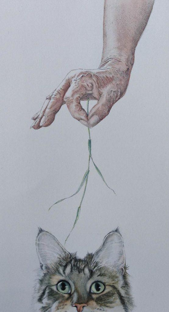 calvin & hand
